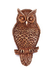 Wise Owl Door Knocker