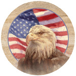 American Independence Eagle Coasters