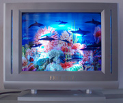 3-D TV Style Dolphin Motion Lamp