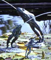 Leaping Frog Water Fountain